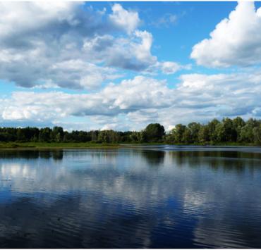 В Московской области утонул пропавший мальчик-аутист