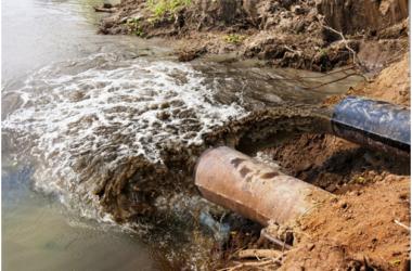 Состояние водных артерий Московской области находится под угрозой